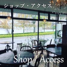 Shop / Access